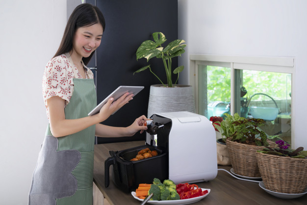 Kitchen Electric Fryer