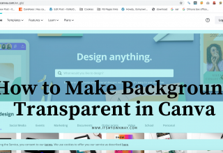 background transparent in Canva